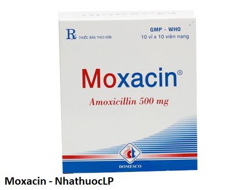 biện pháp phòng ngừa của Moxacin